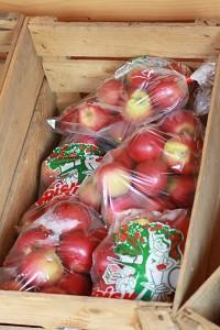 Gårdbutik - Æbler fra Gårdagergård